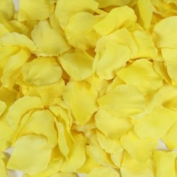 Yellow Petals - Pack of 200