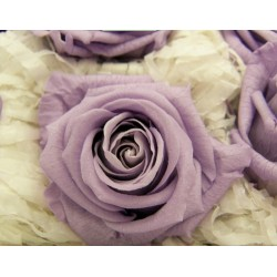 Lylac Preserved Mini Roses - Pack of 12