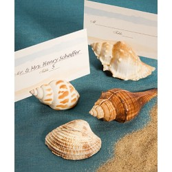Place Card Holders Shell Selection - Set x 4