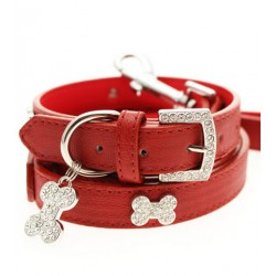 Red Leather Dog Collar & Lead