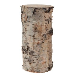 3 Birch Pillars H10/15/20 cm