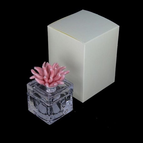 Glass Favor Box
